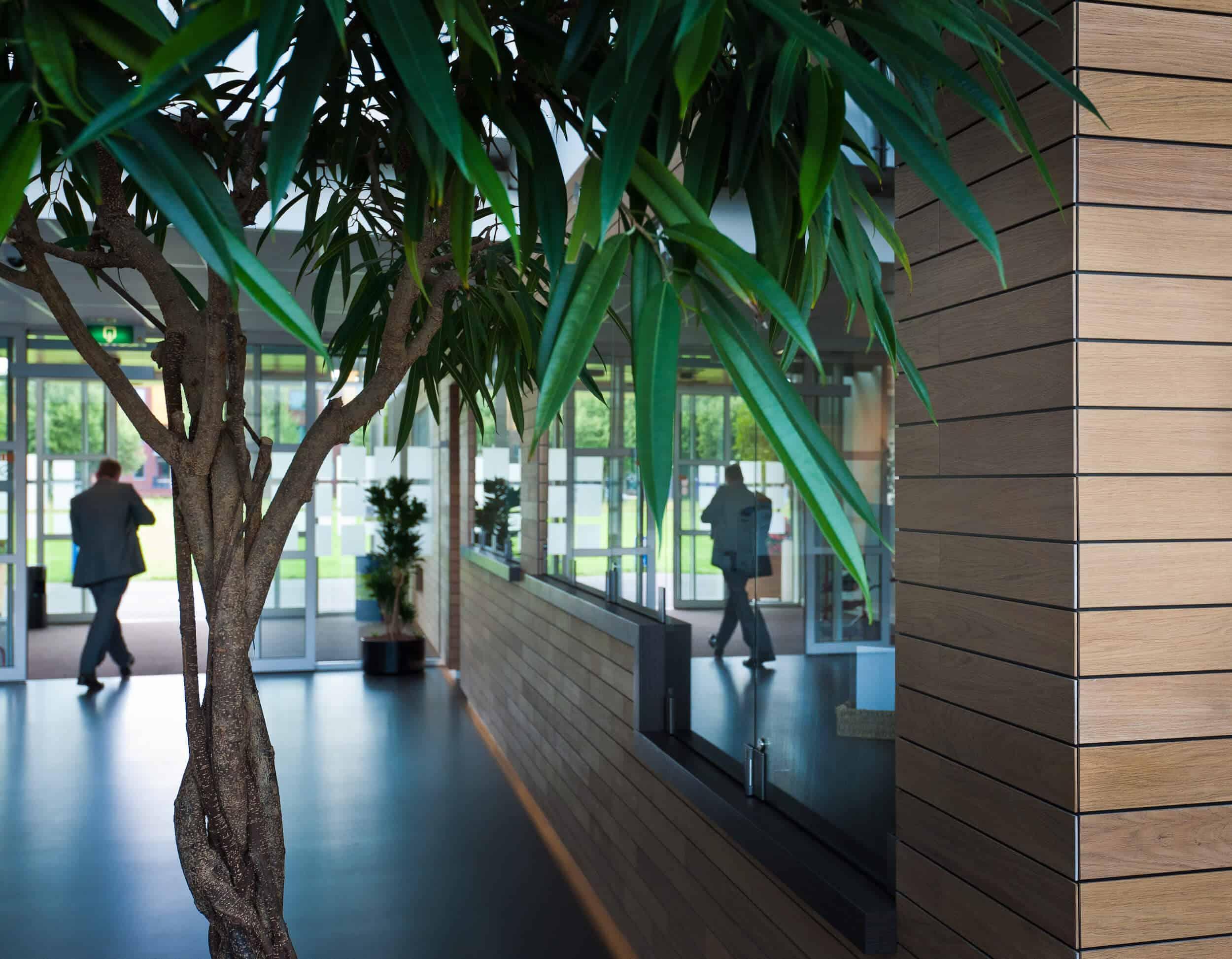 Groene planten in een interieur met hout elementen