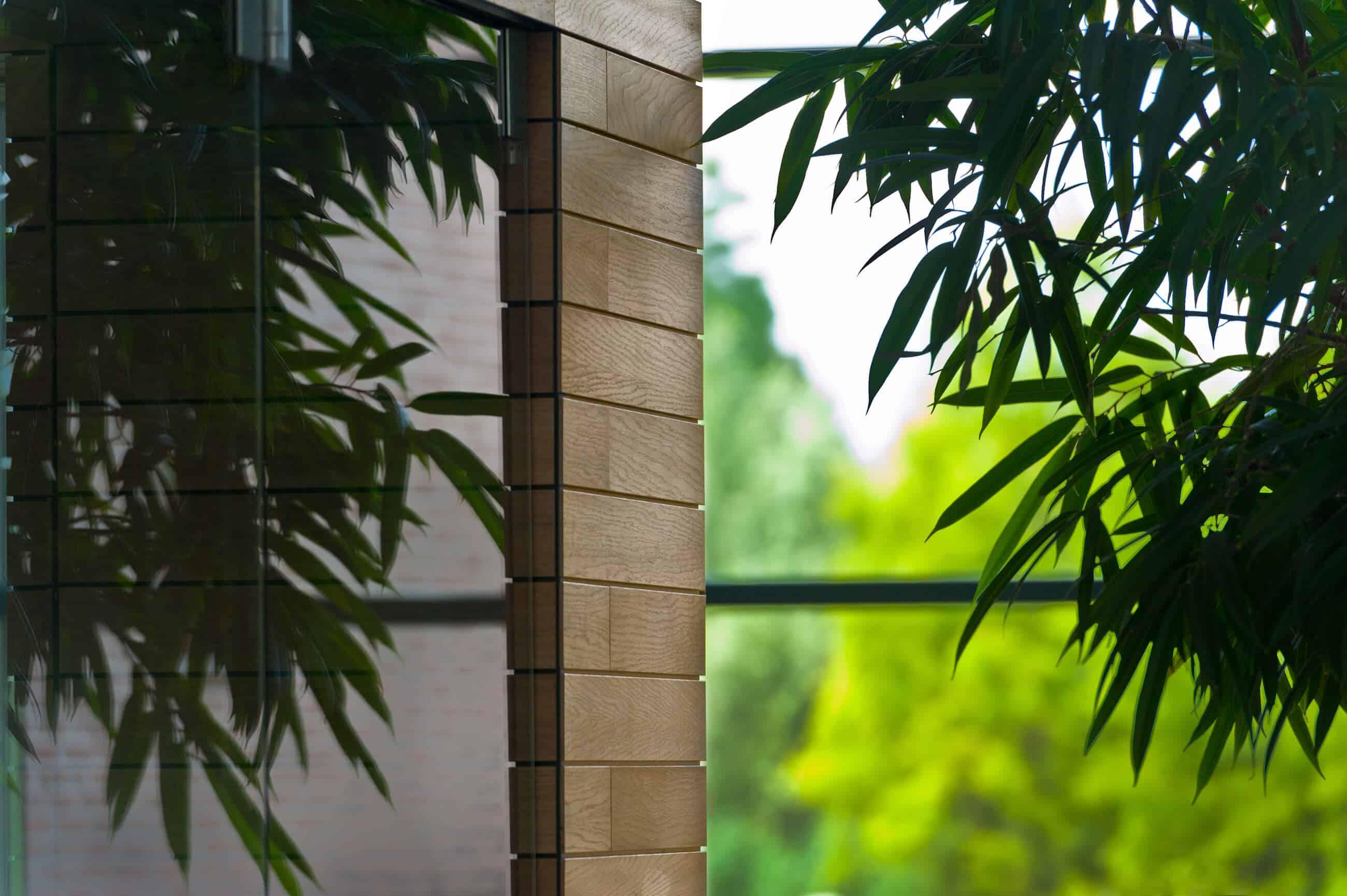 groenvoorziening in een ruimte met glaspartij en houten elementen