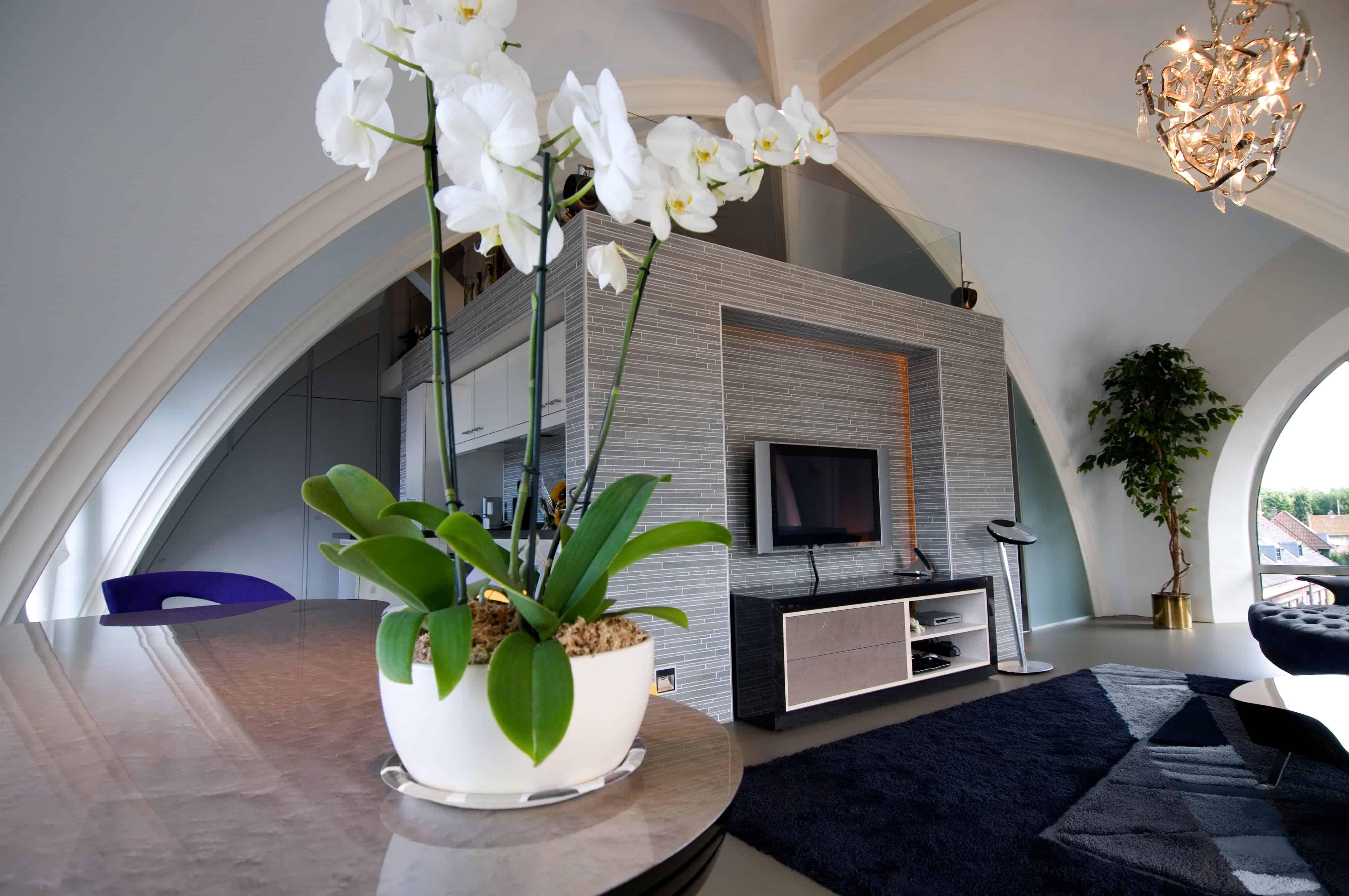 Multifunctioneel kastenblok met aan de buitenkant links de keuken, lamp van Brand van Egmond en tv meubel en rechts van het blok is het slaapvertrek