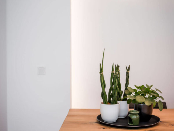 interieurarchitect Stan Wildenberg ontwerp interieur keuken hoek eettafel hanglampen planten decoratie