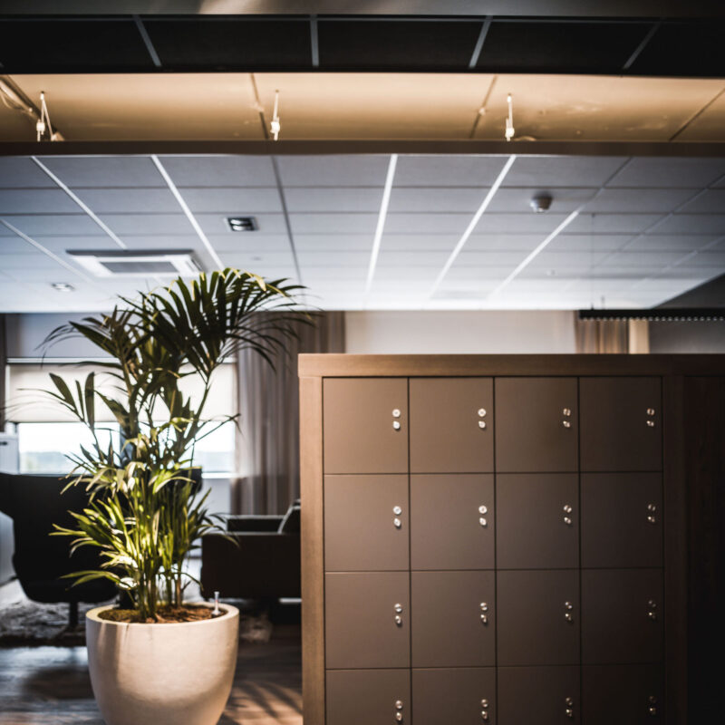 interieurarchitect interiorarchitect Wildenberg officedesign RGF Staffing hospitalityinteriors officeinspiration kantoorontwerp officeinterior Peter Baas Fijri Hoogendoorn Lightboxx